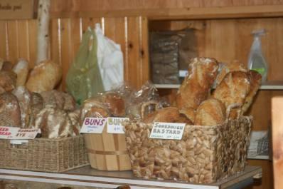 Angel breads3