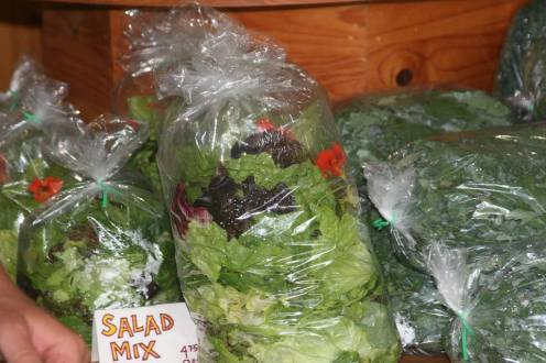 Wendt salad