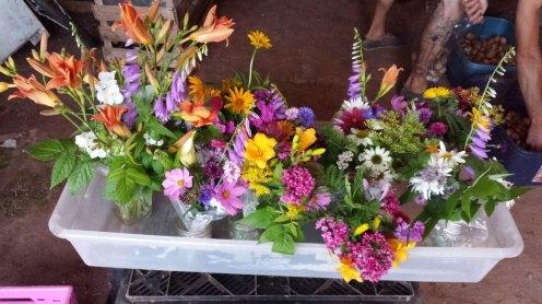 seaspray_flowers